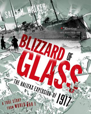 Blizzard of Glass By Walker, Sally M